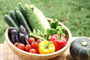 夏バテ対策に夏野菜