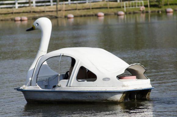 下町デートは不忍池スワンボート